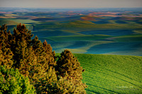 Palouse Country 2014 - Sunset #3